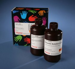 Thermo Scientific™ Pierce™ TMB Substrate Kit by Thermo Fisher Scientific thumbnail