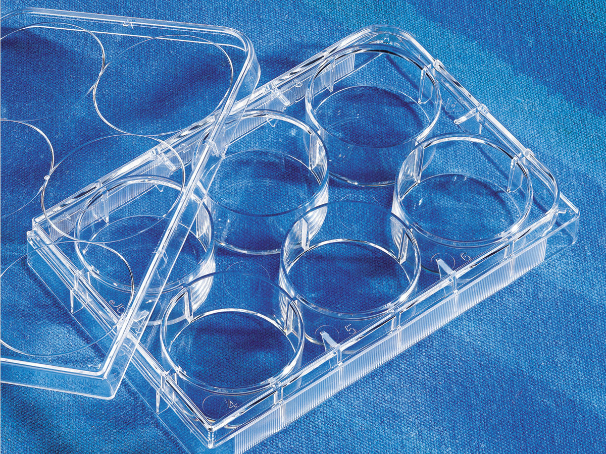 Costar® 6-well Clear TC-treated Multiple Well Plates, Individually Wrapped, Sterile by Corning Life Sciences thumbnail