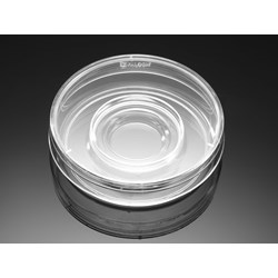 Falcon® 60 mm TC-treated Center Well Organ Culture Dish, 20/Pack, 500/Case, Sterile by Corning Life Sciences product image