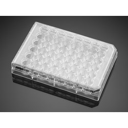 Falcon® 48-well Clear Flat Bottom TC-treated Cell Culture Plate, with Lid, Individually Wrapped, Sterile, 50/Case by Corning Life Sciences product image