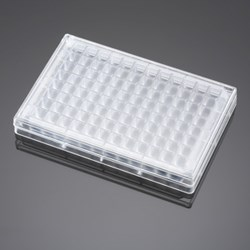 BD Falcon 96-Square Well, Angled Bottom Plate and Lid by BD Biosciences Discovery Labware product image