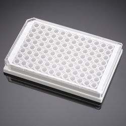 BD BioCoat Poly-D-Lysine 96-well Microplates, white by BD Biosciences Discovery Labware thumbnail