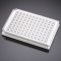 BD BioCoat Poly-D-Lysine 96-well Microplates, white by BD Biosciences Discovery Labware product image