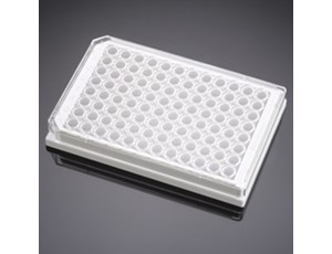 BD BioCoat Poly-D-Lysine 96-well Microplates, white/clear