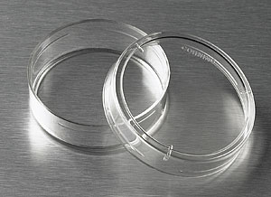 Corning® 35 mm TC-treated Culture Dish by Corning Life Sciences thumbnail