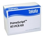 PrimeScript RT-PCR Kit