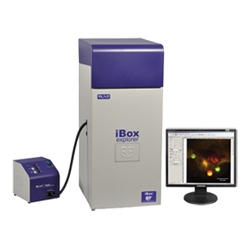 iBox® Explorer™ Imaging Microscope by Analytik Jena US thumbnail