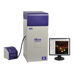 iBox® Explorer™ Imaging Microscope by Analytik Jena US product image