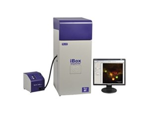 iBox® Explorer™ Imaging Microscope