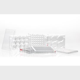 Tissue culture plates by SARSTEDT AG & Co. KG product image