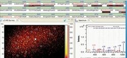 ProteinScape Proteomics MS Data Management