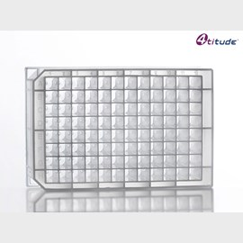 2.2 ml Square 96 Deep Well V-Bottom Storage Plate (Clear) by 4titude Ltd product image