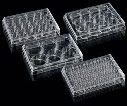 Cell Culture Plates by Porvair Sciences Ltd product image