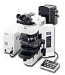 BX61 Motorized Research Microscope by Olympus Life Science thumbnail