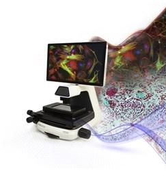 EVOS™ M5000 Imaging System