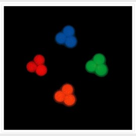 TetraSpeck™ Microspheres, 0.1 µm, fluorescent blue/green/orange/dark red by Thermo Fisher Scientific product image