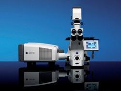 LSM 710 for Fluorescence Imaging