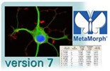 MetaMorph® Image Analysis Software