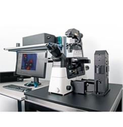 alpha300 Ri – Inverted Confocal Raman Imaging