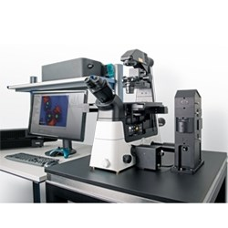 alpha300 Ri – Inverted Confocal Raman Imaging by WITec GmbH product image