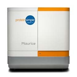 Maurice by ProteinSimple product image