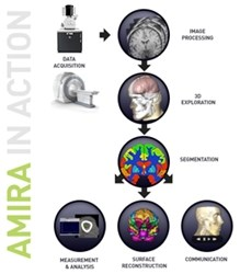 Amira 3D Analysis Software by FEI Company product image