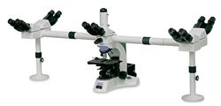 DX41 High Magnification Routine Laboratory Microscope by Vision Biomed thumbnail