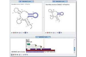 CLC RNA Workbench Software
