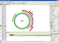 CLC DNA Workbench Software by CLC bio thumbnail