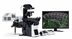 FV1200 Biological Confocal Laser Scanning Microscope by Olympus Life Science product image