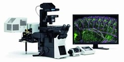 FluoView FV1200 Confocal Laser Scanning Microscope by Olympus Life Science product image