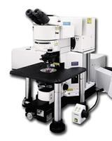 DEACTIVATE: Fluoview FV1000MPE multiphoton laser scanning microscope by Olympus Life Science thumbnail