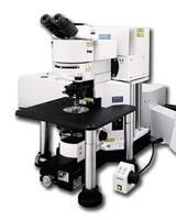 DEACTIVATE: Fluoview FV1000MPE multiphoton laser scanning microscope by Olympus Life Science product image