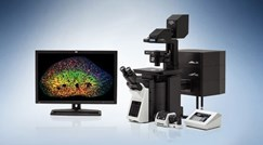 FLUOVIEW FV3000 & FV3000RS Confocal Laser Scanning Microscope