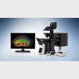 FLUOVIEW FV3000 & FV3000RS Confocal Laser Scanning Microscope by Olympus Life Science product image