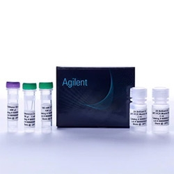 Brilliant III Ultra-Fast QRT-PCR Master Mix by Agilent Technologies thumbnail
