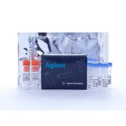AAV-293 Cells by Agilent Technologies product image