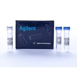 StrataClone PCR Cloning Kit by Agilent Technologies product image