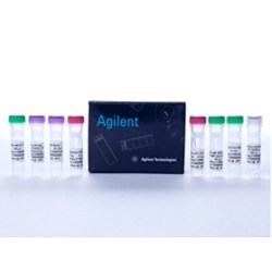 AccuScript PfuUltra II RT-PCR Kit by Agilent Technologies product image