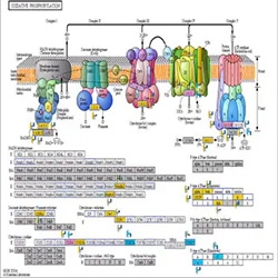 GeneSpring GX software by Agilent Technologies thumbnail