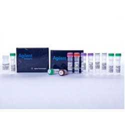 High-Specificity miRNA QPCR Core Kit by Agilent Technologies thumbnail