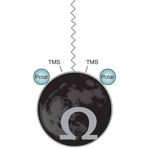 Luna Omega Polar C18 by Phenomenex Inc thumbnail