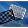 Universal-BIND, Stripwell plate, 8 well, flat - 2504 by Corning Life Sciences related product thumbnail