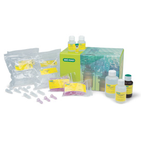 Aurum™ Total RNA Fatty and Fibrous Tissue Kit by Bio-Rad thumbnail