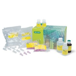 Aurum™ Total RNA Fatty and Fibrous Tissue Kit by Bio-Rad product image