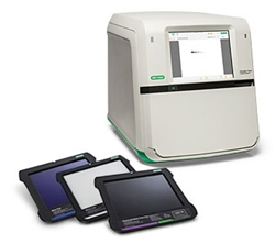 ChemiDoc™ Touch Imaging System (1708370) by Bio-Rad thumbnail
