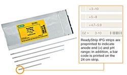 ReadyStrip IPG Strips by Bio-Rad product image
