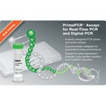 PrimePCR™ Validated Assays and Pathway Panels for Real-Time and Digital PCR