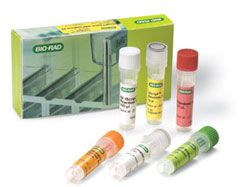 iScript Select cDNA Synthesis Kit by Bio-Rad thumbnail