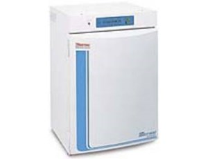 Forma* 310 Direct Heat CO2 Incubators